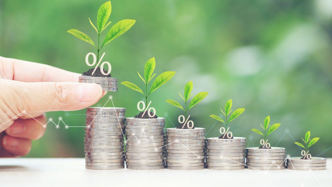 finance, green, plants, procenten
